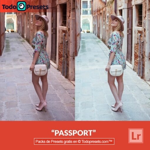 Pasaporte Preset de Lightroom gratis