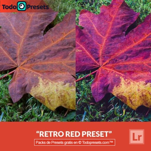 Lightroom Preset Retro Red