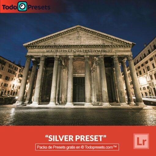Lightroom Preset Silver gratis