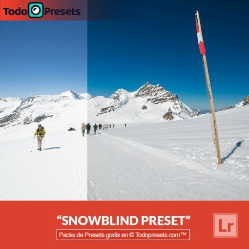 Cortina de nieve Preset de Lightroom gratis