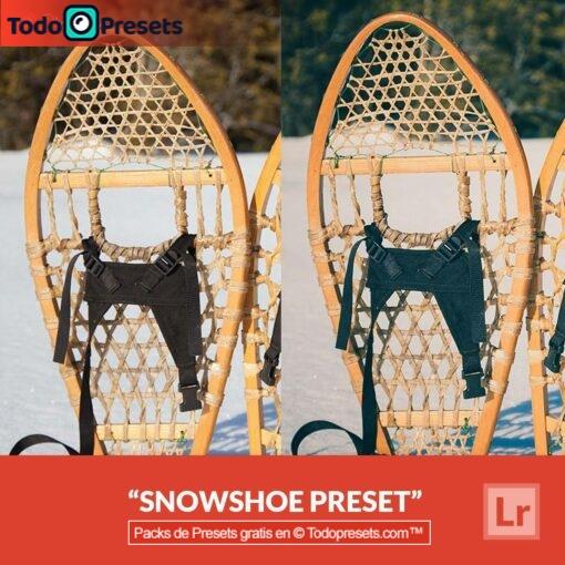 Raquetas de nieve Preset de Lightroom gratis