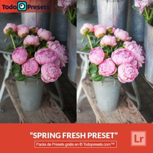 Lightroom Preset Spring Fresh