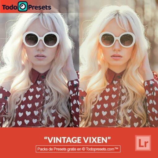 Lightroom Preset Vintage Vixen