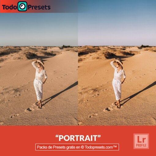 Retrato de perfil de Lightroom gratis