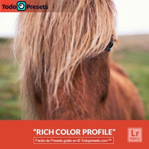Perfiles de Lightroom gratis Color intenso