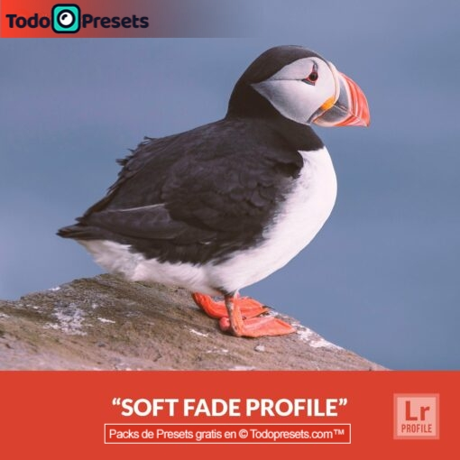 Perfiles de Lightroom gratis Soft Fade
