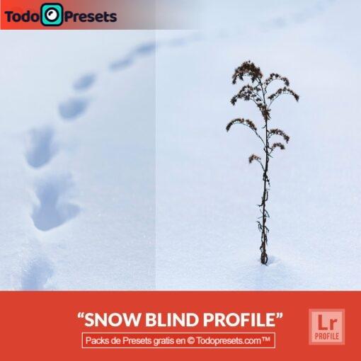 Perfiles gratis de Lightroom Snow Blind