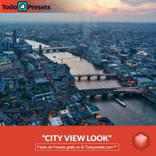 Vista de la ciudad de Luminar Look gratis