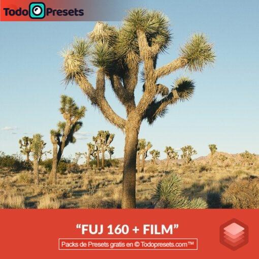 Luminar Look FUJ 160 gratis