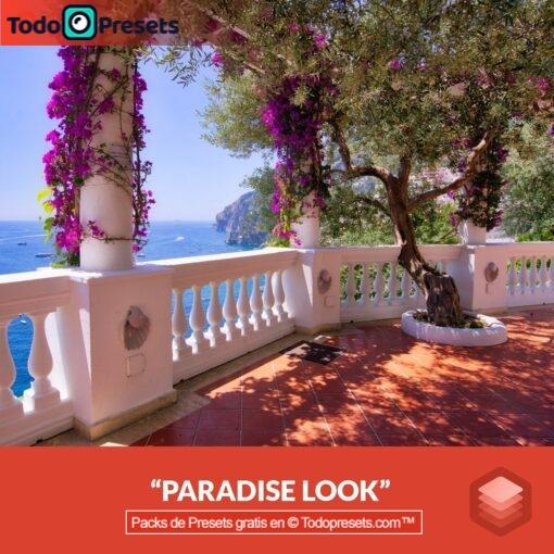 Luminar Preset Paradise
