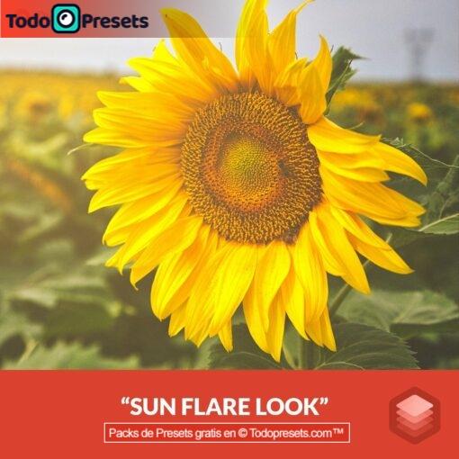 Llamarada de sol Luminar Look gratis