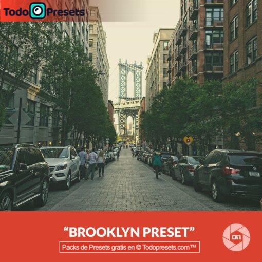 On1 Preset Brooklyn