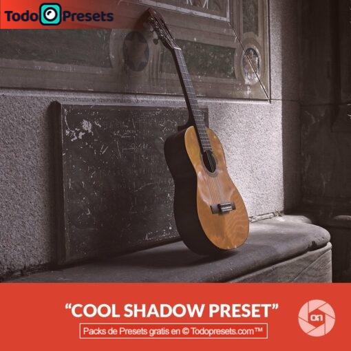 On1 Preset Cool Shadows