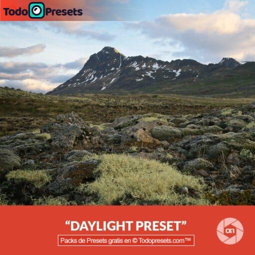 On1 Preset Daylight