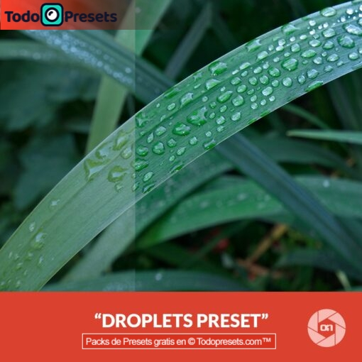 On1 Preset Droplets
