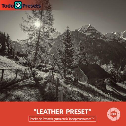 On1 Preset Leather