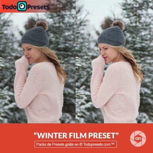 On1 Preset Winter Film