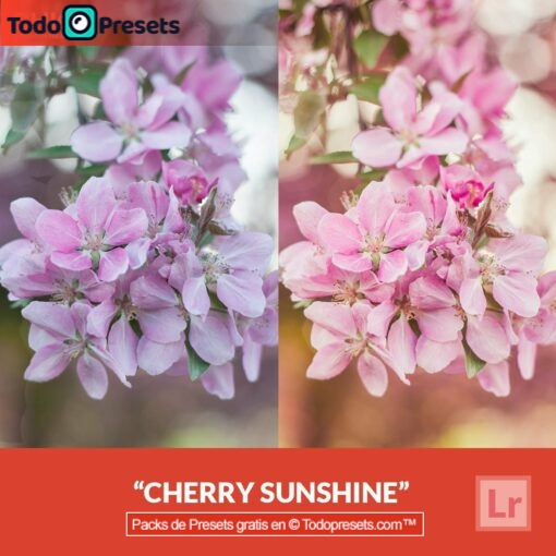 Lightroom Preset Cherry Sunshine